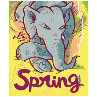 Spring 13 - The Elephant in the Room